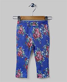 Royal Blue Floral Printed Pants