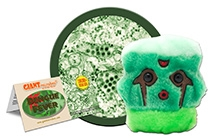 GIANTmicrobes Dengue Fever Plush Toy
