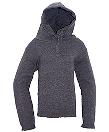 Gron Full Sleeves Hooded Sweater - Solid Color