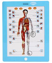 Mitashi Anatomy Learning Pad
