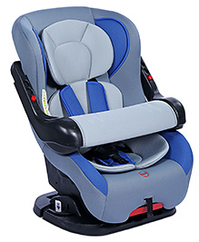 Baby Car Seat - Blue And Grey
