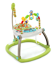 Fisher Price Rain Forest Friends Jumperoo - Green