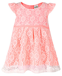 Babyhug Cap Sleeves Lace Frock - Pink