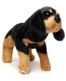 Play And Pets Groveling King Charles Dog Soft Toy Black - Length 44 cm