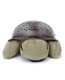 Playmate Turtle With Night Sky Constellations - Green