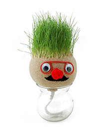 EZ Life DIY Grass Head Plant - Peach