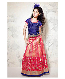 Peek a Boo Shaded Lengha With Choli - Pink & Blue