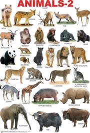 Animals - 2 Chart