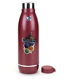 Jayco Blue World Insulated Water Bottle Maroon - 600 Ml