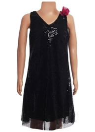 Sleeveless Party Wear Frock - All Over Sequin Work