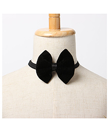 Brown Bows Velvet Butterfly Bow Tie - Black