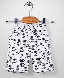 Jash Kids Pull On Jamaican Shorts Coconut Tree Print - White
