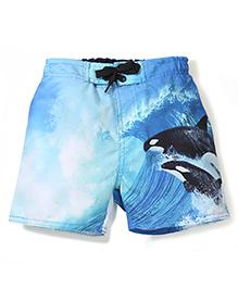 Pumpkin Patch Swim Shorts Whales Print - Blue