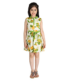 My Lil Berry Sleeveless Belted Printed Shirt Dress - Green And Cream
