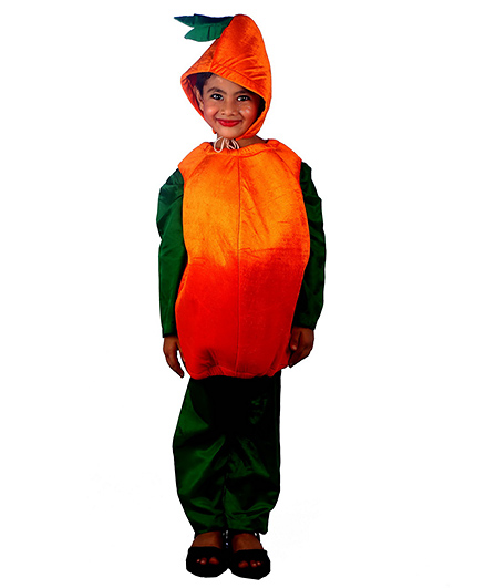 SBD Orange Fruit Fancy Dress Costume - Orange And Green