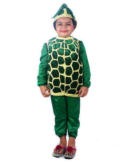 SBD Custardapple Fruit Fancy Dress Costume - Green