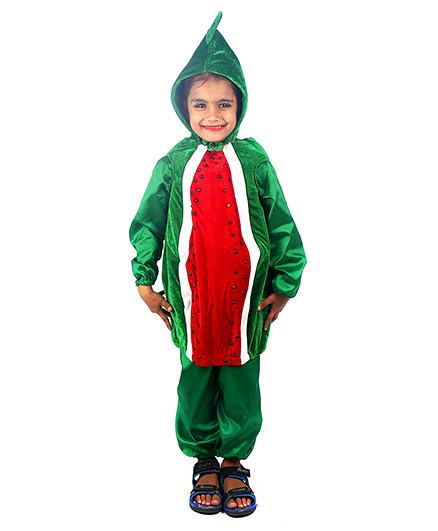 SBD Water Melon Fruit Fancy Dress Costume - Green And Red