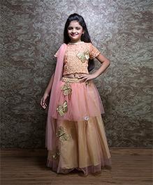 Shilpi Datta Som Butterfly Indo Western Lehenga & Choli Set - Beige & Pink