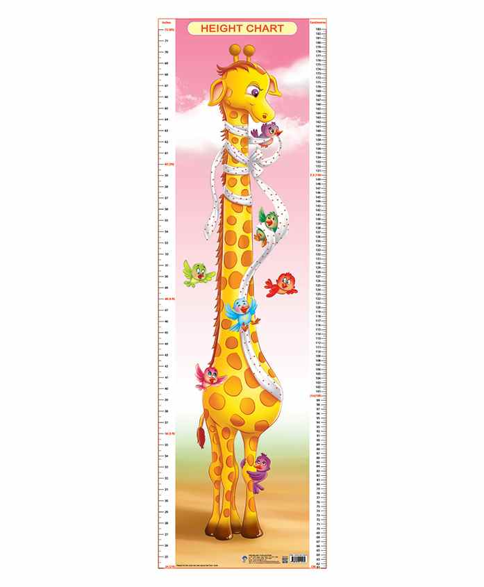 Dreamland Height Chart - 3