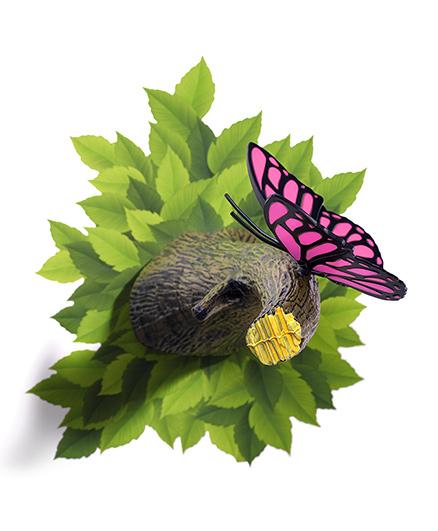 3D Light Butterfly 3D Deco Light - Pink