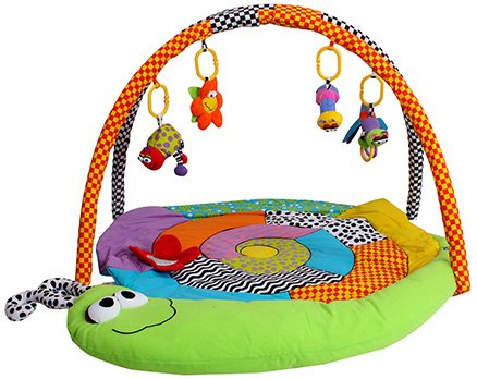 Playgro- Baby Play Gym
