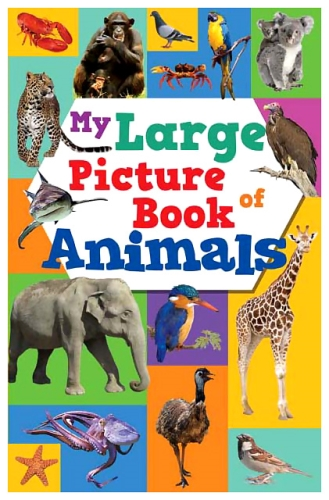 Sterling My Large Picture Book Of Animals - English