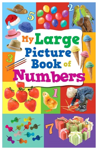 Sterling My Large Picture Book Of Numbers - English