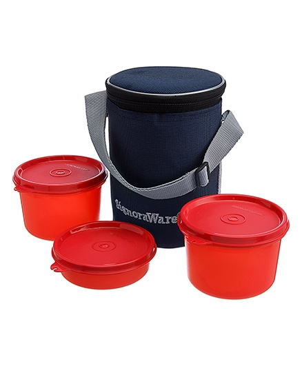 Executive Medium Lunch Box With Bag - Assorted Colors