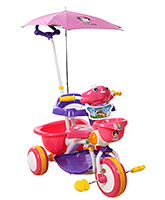 Buy Fab N Funky Musical Baby Tricycle with Umbrella Design Canopy - Pink and Purple