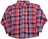 Full Sleeves Cotton Checks Shirt
