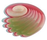 Buy Soapopera Big Shell Soap