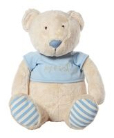 ELC - Soft Plush Teddy Bear 0 Months+, Cute and cuddly toy