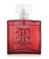 WPC Renaissance 313 Naughty Men EDP Natural Spray