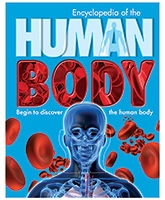 Parragon Encyclopedia Of The - Human Body