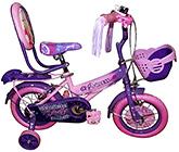 Buy Barbie Super Girls Bicycle 12  Inches wheel Diameter