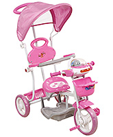 Buy Fab N Funky Musical Tricycle with Canopy and Push Handle - Pink