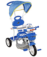 Buy Fab N Funky Musical Tricycle with Canopy and Push Handle - Blue