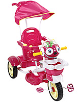 Buy Fab N Funky Musical Baby Tricycle with Push Handle - Pink