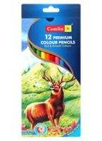Camlin - Premium Colour Pencils 12 Shades of assorted colour pencils