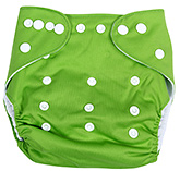Fab N Funky Cloth Diaper With Insert - Green