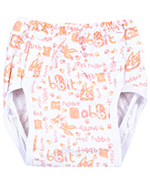 Fab N Funky Reusable Cloth Nappy - Bunny Print