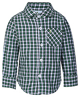 Babyhug Full Sleeves Checks Shirt - Green