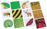 Clever Cubes - Jungle Zoom 15 Pattern Cards , 15 Picture Cards