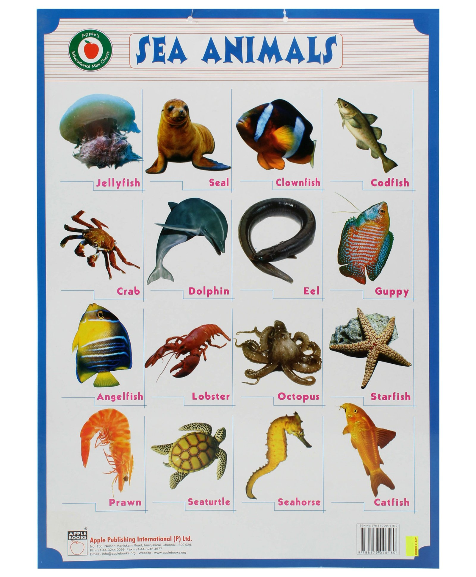 Water Animals Pictures With Names | www.imgkid.com - The ...