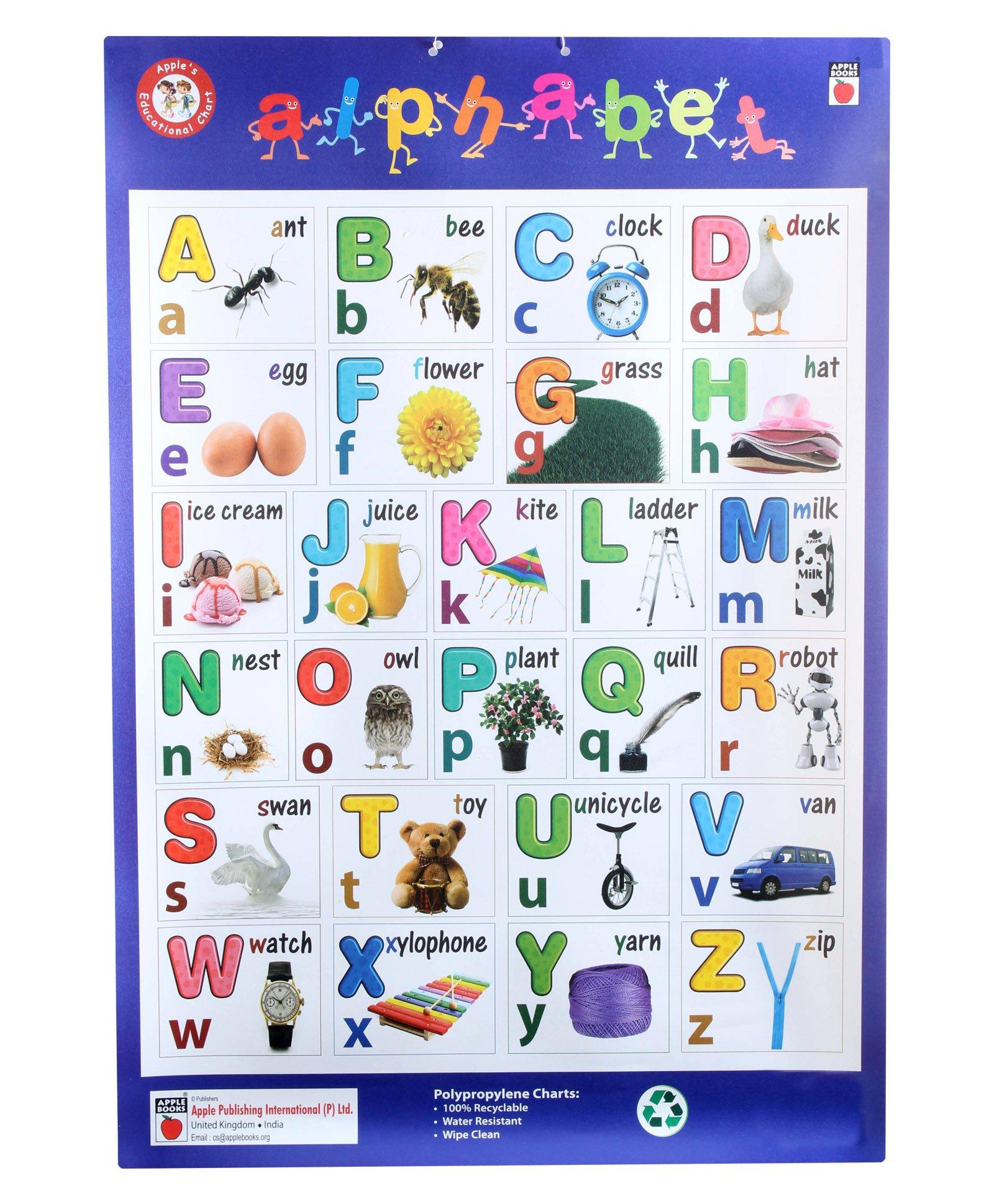 English Alphabets Chart Apple books - alphabets