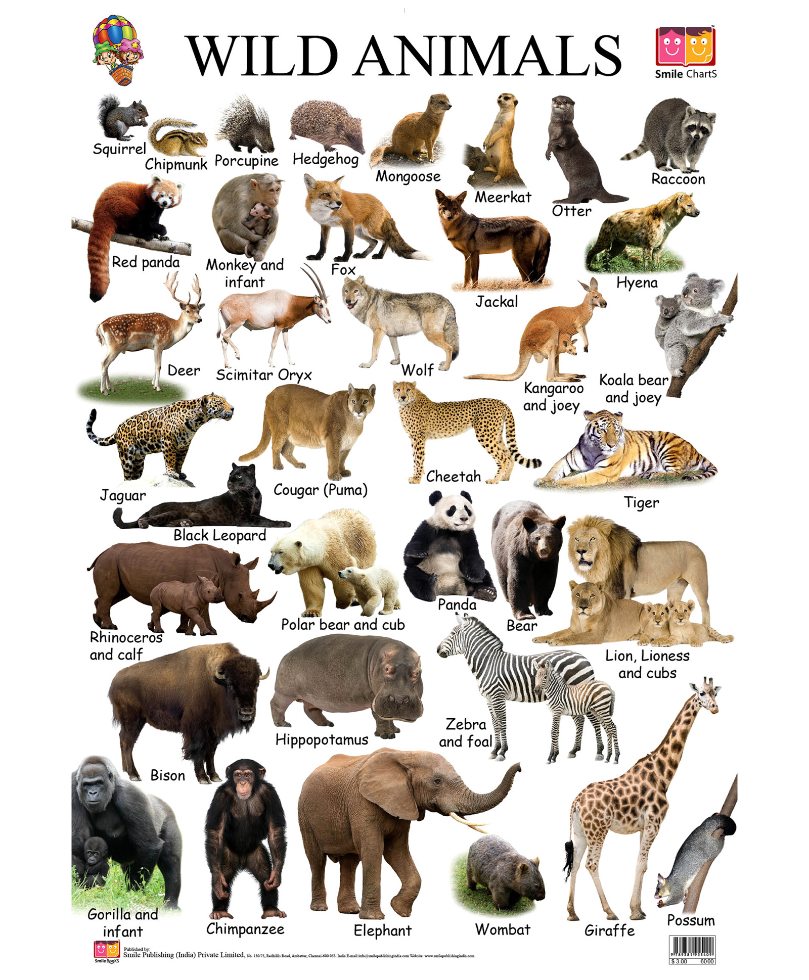 a comparison on the lives of animals and human beings known as speciesism Start studying philosophy 320 single experiment on an animal, opponents of speciesism can reply the rights of human beings and those of animals.