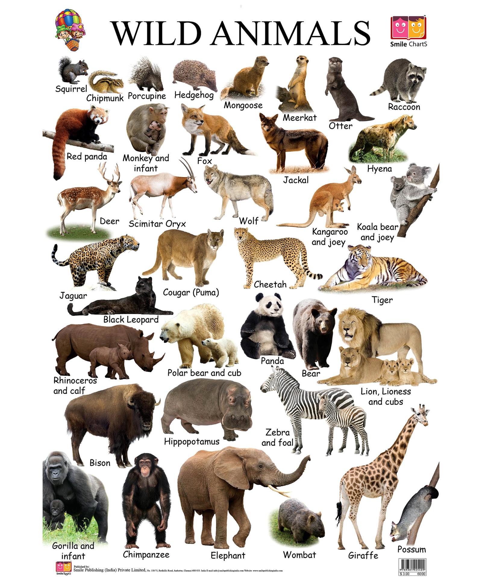 How to name an animal 99