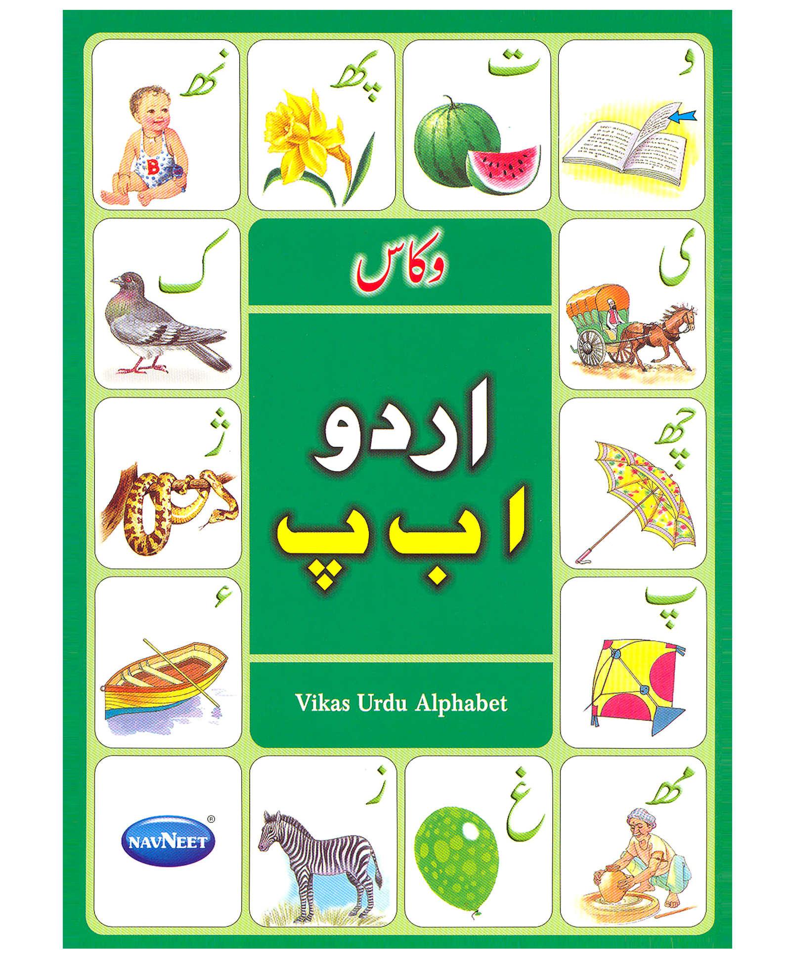 Study in australia urdu