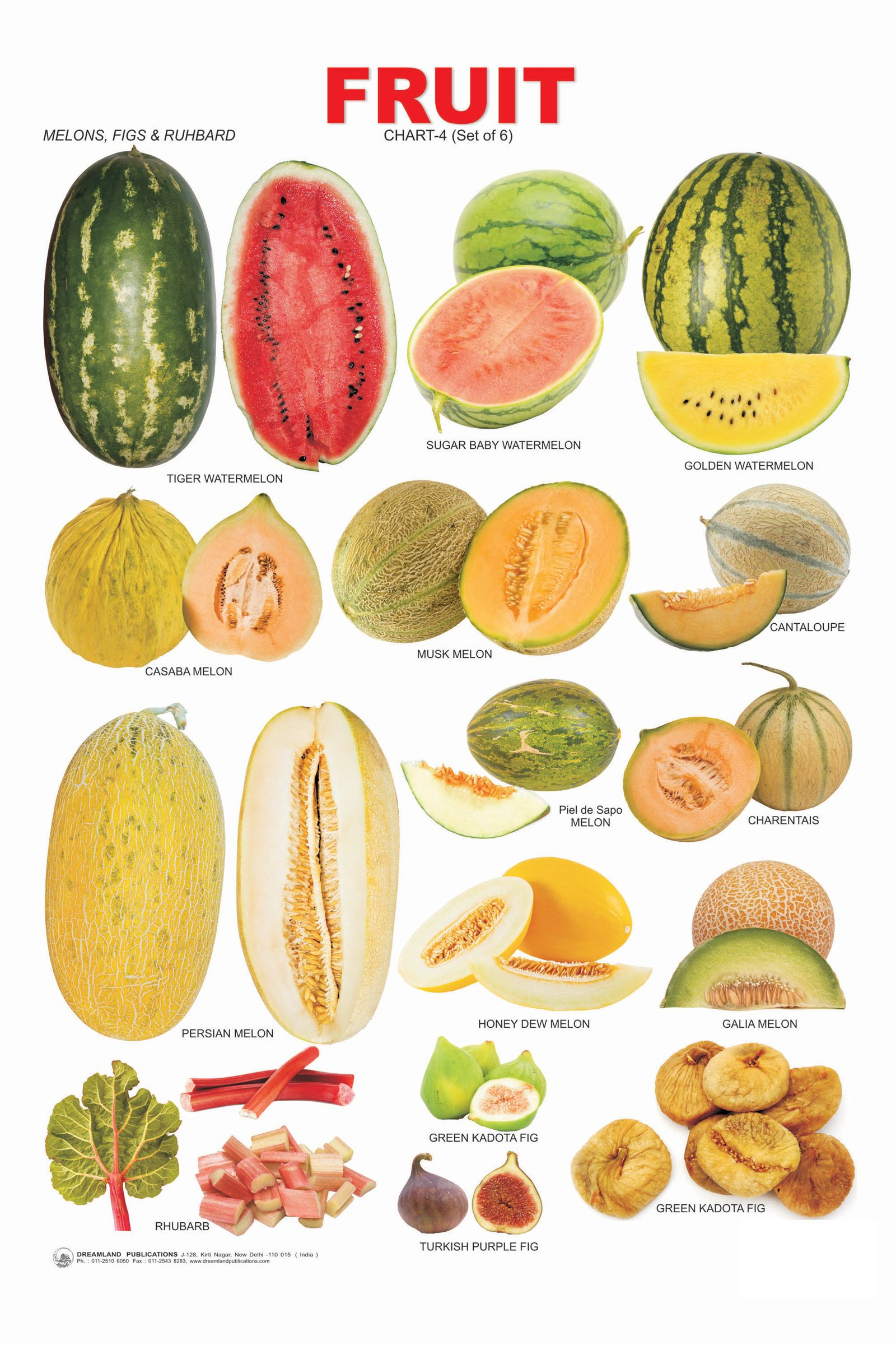 types of fruits and vegetables pdf