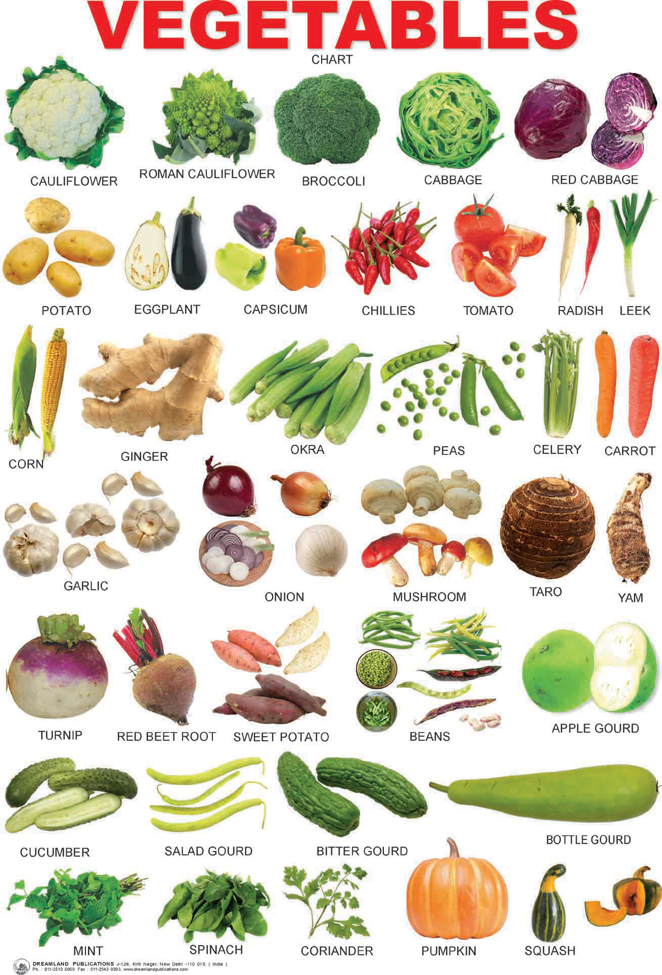 List of Vegetable names in English Hindi and other languages
